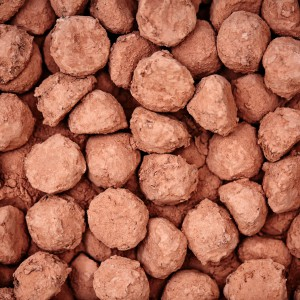 HAPPY PEOPLE PLANET BULK CACAO DARK CHOCOLATE TRUFFLES B67A5306