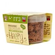 Organic Raw Chocolate Mulberries 50gr tub